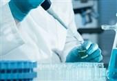 ثبت ۱۴ اختراع پژوهشگران علوم پزشکی گیلان تایید شد