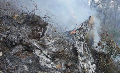 مهار آتش سوزی در شهرستان های لاهیجان و لنگرود / ادامه وزش باد گرم در گیلان