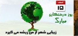 مهندس ناصر عطایی مدیر شهرداری منطقه یک به مناسبت روز درختکاری