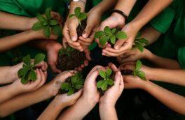 به بهانه روز جهانی محیط زیست و منابع طبیعی/ مردم علاوه بر دانش زیستمحیطی رفتار زیستمحیطی داشته باشند