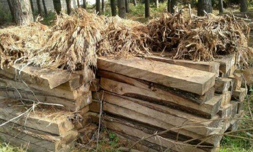 کشف شش تن چوب قاچاق در آستانه اشرفیه