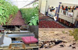 ۲۳ میلیارد تسهیلات اشتغال روستایی و عشایری در رودسر پرداخت شد