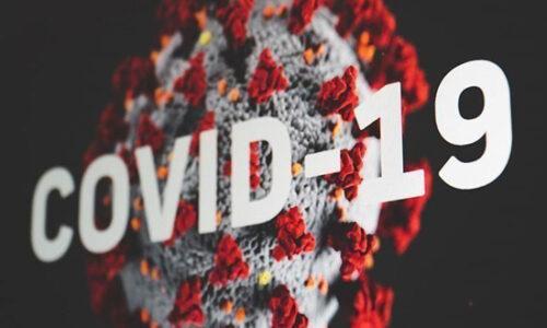 جدیدترین پژوهش محققان: ایمنی در برابر ویروس کرونا چقدر دوام دارد؟