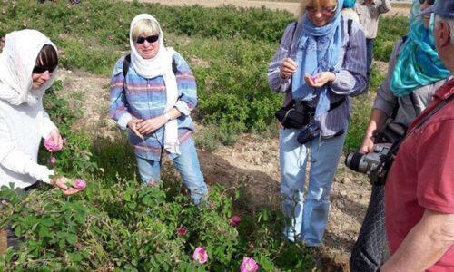 معاون گردشگری گیلان مطرح کرد؛گردشگری کشاورزی یکی از راهبردهای مهم برای توسعه روستایی