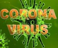یافته جدید محققان کانادایی؛ کروناویروس تا سه روز بر روی خیار باقی می ماند