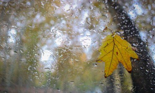 احتمال بارش برف و کاهش محسوس دما در گیلان