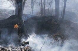 اطفا حریق در تمامی مراتع و مناطق جنگلی درگیر آتش گیلان