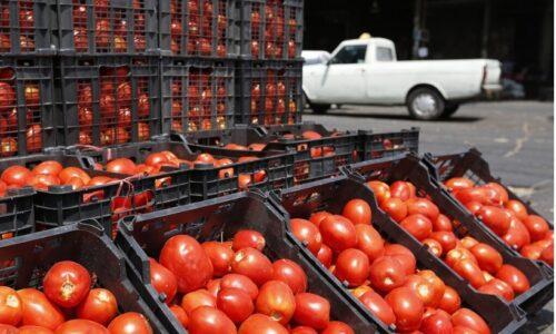 مدیر تعاون روستایی گیلان: ۲۲۷ تن محصول کشاورزی از تولیدکنندگان استان های دیگر توافقی خریداری شد