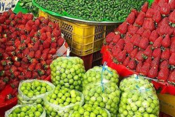 قیمت میوه های نوبرانه اعلام شد