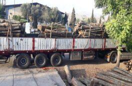 رئیس اداره منابع طبیعی رودبار خبر داد کشف ۱۰۰ اصله چوب جنگلی قاچاق در لوشان