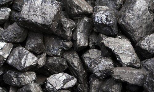 کشف محمولههای زغال قاچاق و ماهی فاسد در آستارا