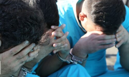دستگیری عاملان ضرب و شتم جنگلبانان و سارق لوازم خودرو در تالش
