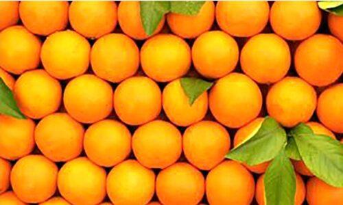 قیمت پرتقال شب عید بالای ۱۰ هزار تومان + جزئیات