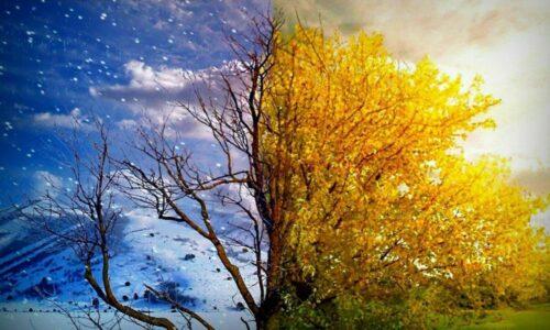 زمستان گیلان تابستانی میشود/ افزایش ۸تا۱۲ درجهای دمای هوای گیلان