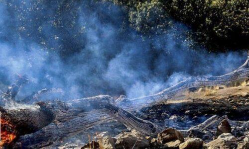 آتشسوزی مراتع تالش مهار شد
