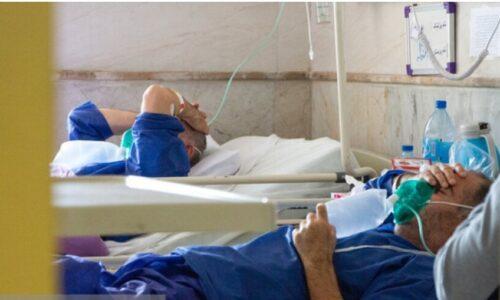 معاون درمان ستاد کرونا در استان تهران هشدار داد؛ افزایش ابتلا به کرونا در ۲ رده سنی/نتیجه عادی انگاریها تا دو هفته دیگر
