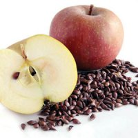 مصرف دانه سیب خطرناک است؟