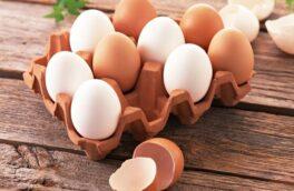 توقیف محموله ۱۴ تنی تخممرغ فاقد مجوز در رودسر
