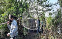 تخریب ۱۷ کومه غیرمجاز صیادی در پارک ملی بوجاق گیلان