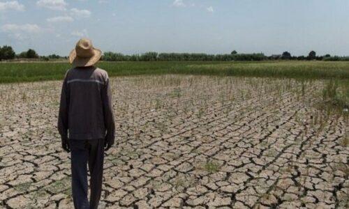 مدیرکل مدیریت بحران گیلان خبر داد تخصیص اعتبار ۴۰ میلیاردی برای مقابله با تنش آبی گیلان