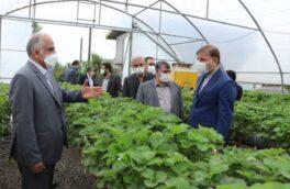 استاندار گیلان:۱۶۰۰ فرصت شغلی برای جوانان استان ایجاد می شود