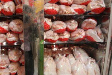 روزانه ۲۵۰ تن مرغ گرم در گیلان توزیع می شود